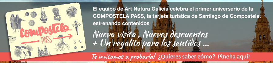 Compostela Pass